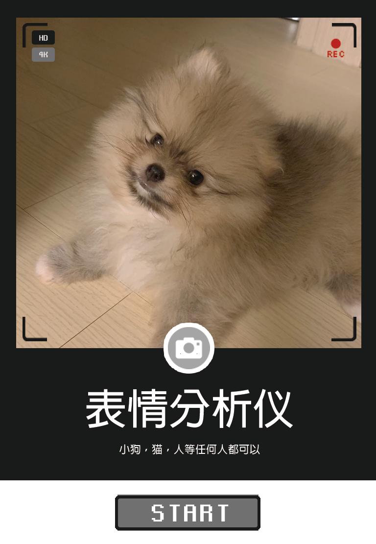 表情分析仪|狗,猫,人人都能做地表情分析仪