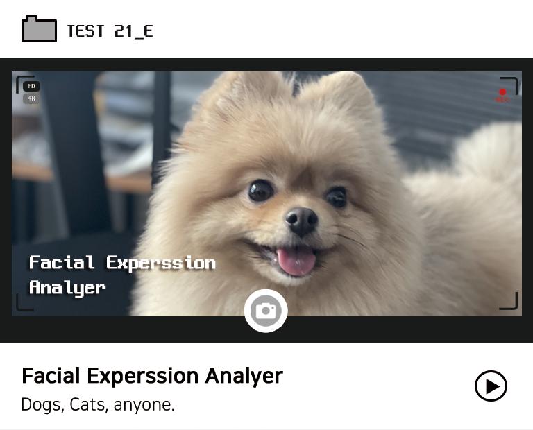Facial Expression Analyzer